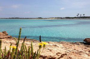 Playa de Ses Illetes en Formentera desde las rocas