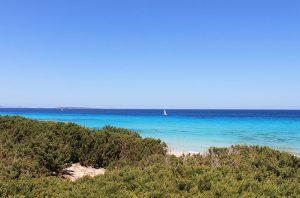 Dunas en la playa de Levante en Formentera