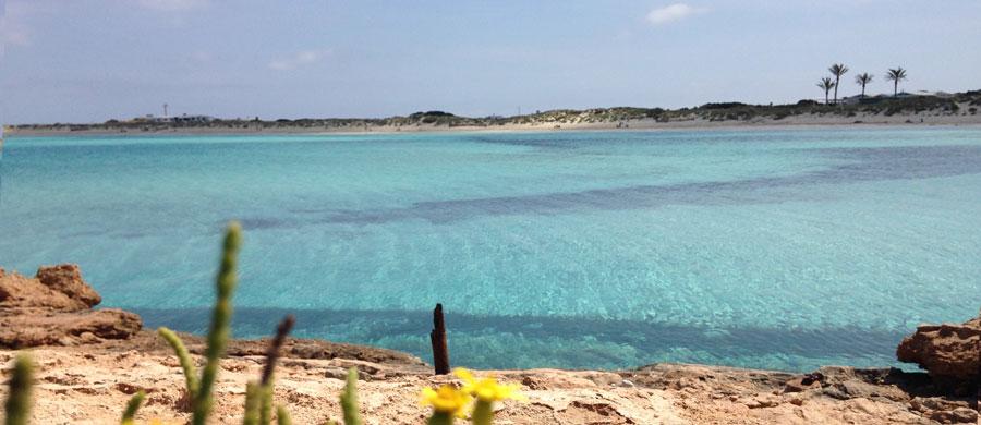 Playa de Ses Illetes en Formentea