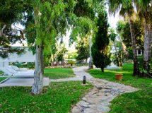 Paraíso de los Pinos Formentera - Jardines