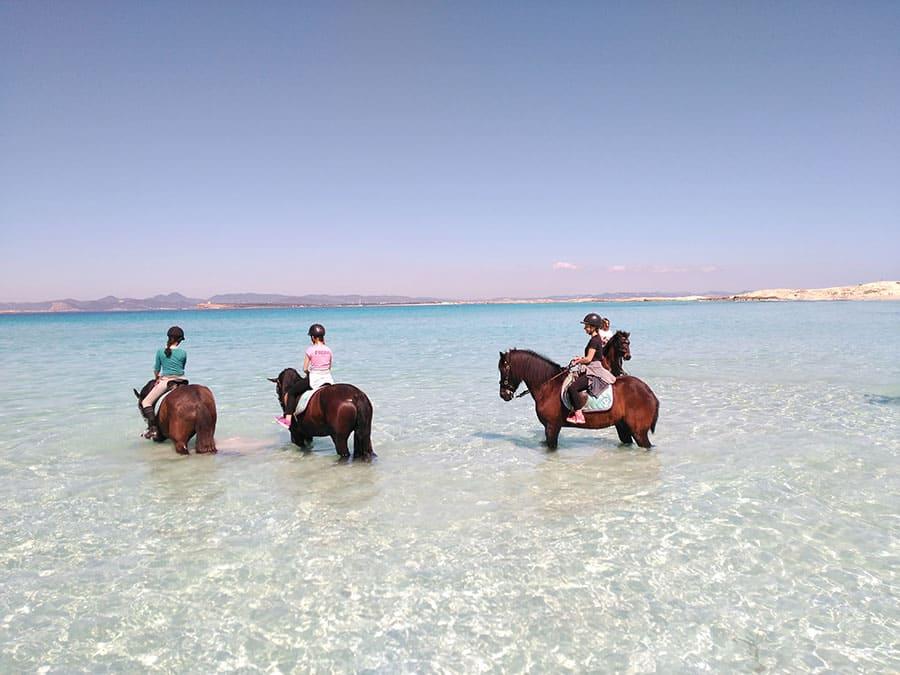 Rutas a caballo por la playa de Es Pujols