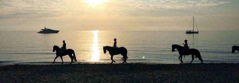 Rutas a caballo en Formentera