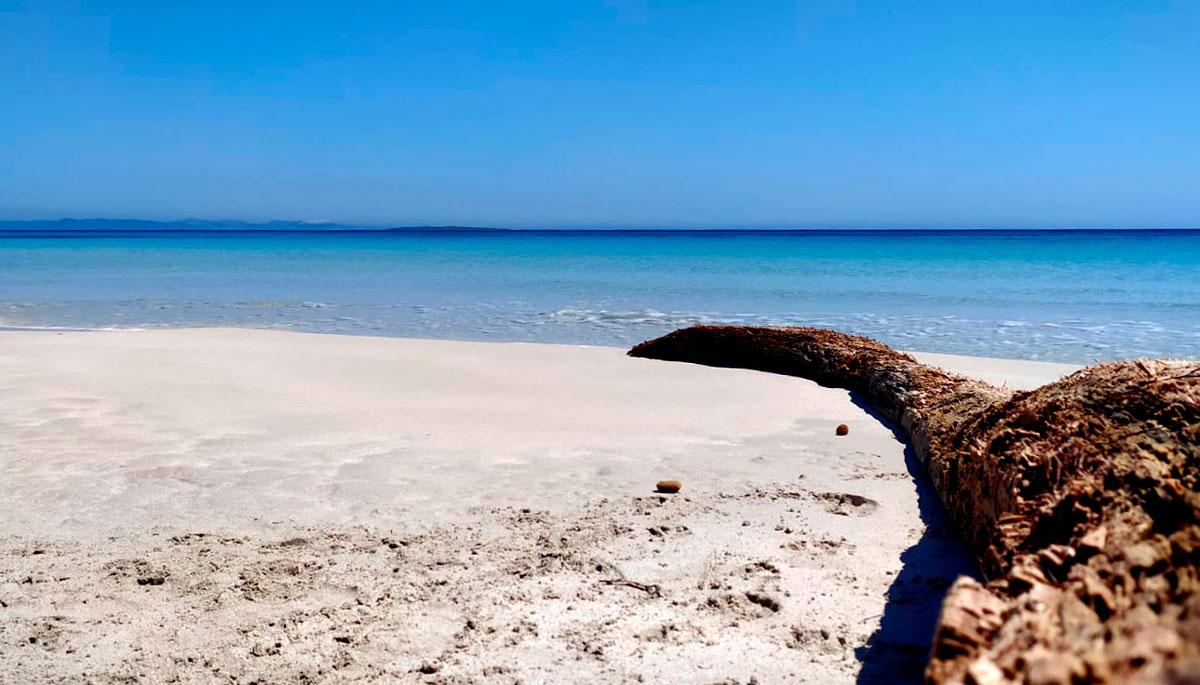 Día tranquilo en la playa Sa Roqueta. Fotografía: @eclectik_a