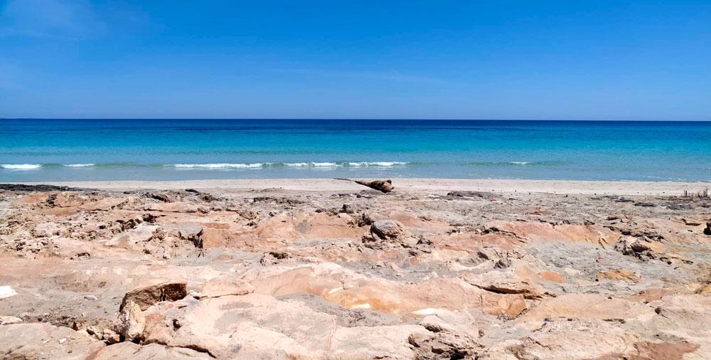 Playa Sa Roqueta, zona de levante, Es Pujols. Fotografía: @eclectik_a