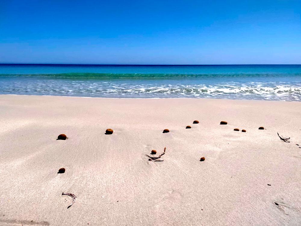 Playa Sa Roqueta, Es Pujols. Fotografía: @eclectik_a