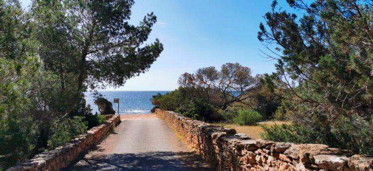 Nordic Walking Formentera